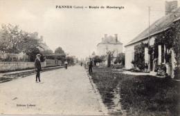 /45/  PANNES ROUTE DE MONTARGIS - Francia