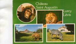 - CPA - 03 -  CHATEAU-SUR-ALLIER - Parc De Saint-Augustin  - 677 - Otros Municipios