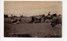On The Farm REAPING (attelage-ferme Agriculture) - Attelages
