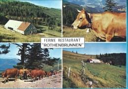"C.P.M. Sondernach - Ferme Auberge ""Rothenbrunnen "" - France"