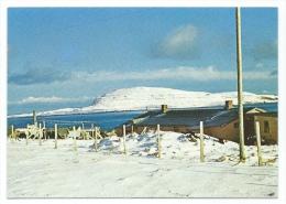 Iles Féroé  -  Faroe Islands  -  (voir Scan Du Dos) - Féroé (Iles)