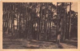 ¤¤   -   QUIMIAC En MESQUER   -  Sous-Bois   -  ¤¤ - Mesquer Quimiac