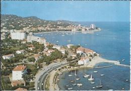 SAINTE MAXIME  Vue Générale - Sainte-Maxime