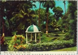 C.P.M. - St. VINCENT & GRENADINES - Botanic Gardins - T.B.E. - Saint-Vincent-et-les Grenadines