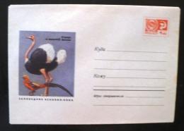 URSS-RUSSIE Oiseaux, Autruche. Entier Postal Emis En 1969. Neuf - Autruches