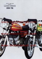Moto Guzzi 250 TS Elettronica Depliant Originale Factory Original Brochure - Moteurs
