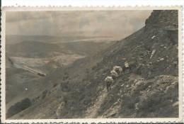 CPSM La Rhune , Monte Larun , Vera De Bidasoa , Frontera Franco Espagnola , Muletiers , Carte Photo Voyagée Manque Timb - Frankreich