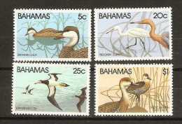 Bahamas  - 1981 Birds (Wildlife series 1) set of 4 MNH **   SG 589-92  Sc 492-5