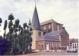 Zonhoven Sint-Quintinuskerk Foto - Zonhoven
