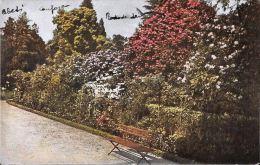 [DC5601] CARTOLINA - IL LAGO MAGGIORE ILLUSTRATO - GIARDINI DELL'ISOLA MADRE - CP - NV - Old Postcard - Verbania