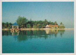 Maldiven - North Male Atoll - Baros Holiday Resort - Nice Stamp - Maldiven
