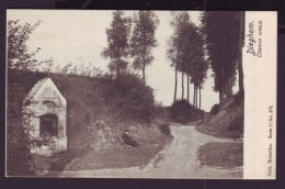 Carte Postale - DIEGEM - DIEGHEM - Chemin Creux - CPA  // - Diegem