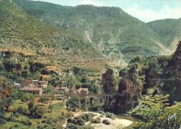 LANGUEDOC ROUSSILLON - 48 - LOZERE  - SAINT CHELY DU TARN - Gorges Et Cirque De Saint Chély - Saint Chely D'Apcher