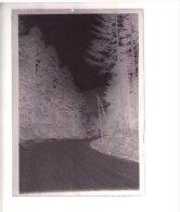 1 Negatif Plaque De Verre 9 X 6 Cm  - Paysage Route - Plaques De Verre