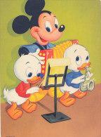 DP00456 - DISNEY 1964 MICKEY AND NEPHEWS - CP ORIGINAL UNWRITTEN - Disney