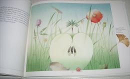 le livre de la cr�ation - Georges Lemoine - PM Beaude - Centurion Okapi prix Bologne 1988 pomme