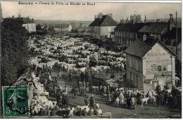Saulieu Cote Or Champ Foire Marché Octroi Ambulant Cravant Autun 1907 état Superbe TOP - Saulieu
