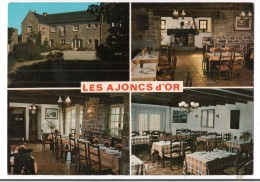 CP, COMMERCE, RESTAURANTS, Hotel-Restaurant LES AJONCS D'OR - PLOUHARNEL (56), Multivues, Vierge - Restaurantes