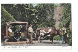 LVA1763 - Madeira Carro De Bois - Madeira