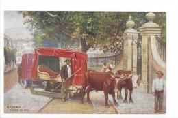 LVA1764 - Madeira Carro De Bois - Madeira