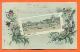 """Dpt  78  Versailles  """"  De Versailles , Je Vous Envoie Ces Fleurs  """" - Versailles"""