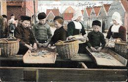 [DC5613] CARTOLINA - NET SCHOONMAKEN DER ANSJOVISCH - BAMBINI CHE PULISCONO LE ACCIUGHE - CP - V - Old Postcard - Paesi Bassi