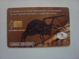 MEXICO -  PHONECARD - UNAM - ARA�A - VIUDA NEGRA