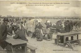 CPA ( 22)  SAINT BRIEUC les courses de chevaux sur la greve de cesson