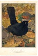 Chromo Menu Cacao Suchard, Grand Format Publicitaire, Oiseaux De Léo-paul Robert 1928 - Menu