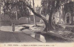 Algeria Oasis De Biskra La Mosque De Sidi-Maleck A Travers Les Arbres - Biskra