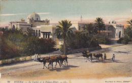 Algeria Oasis De Biskra Le Casino Et Le Palce Hotel - Biskra