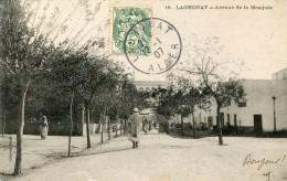 Algérie LAGHOUAT Avenue De La Mosquée  - G - Laghouat