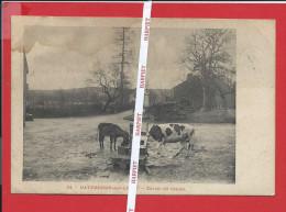 DAVERDISSE  -  Lavoir Du Centre  -  1910 - Daverdisse