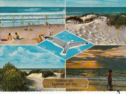 Pk Egmond Aan Zee:381:Groeten - Egmond Aan Zee
