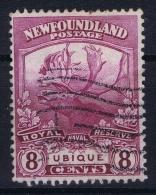 Canada: New Foundland 1919 Mi 102   Used - Neufundland