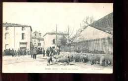 11boit Bram Marché Aux Bestiaux - Bram