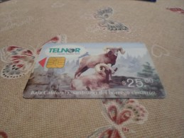 MEXICO - old phonecard as on photo n�9