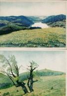 10 Cartes Dessin Au Crayon De Couleur - J. DIETERLEN - Cartes Postales