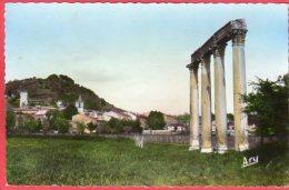 CPSM 04 RIEZ Les Colonnes Romaines  ( Vue Sur Le Village   * Format CPA - Other Municipalities