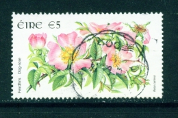 IRELAND  -  2004  Wild Flower Definitives  Dog Rose  5 Euro  Used As Scan