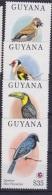 GUYANA - 1994  Birds  Short Set  Mi. B381/84- 4v. Nuovi** Perfetti - Guyana (1966-...)