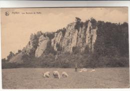 Hotton, Les Rochers De Maffe, Schapen, Sheep, Moutons (pk14806) - Hotton