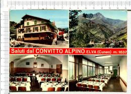 SALUTI Dal  CONVITTO  ALPINO  -  ELVA  -   4 Vues - Cuneo