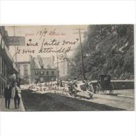 CND1761C-LFTD2661TTSC.Tarjeta Postal De CANADA.carro Y Coche De CABALLOS.por La Carretera En Un Pueblo,QUEBEC - Postales