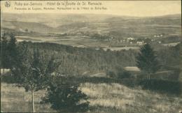 BELGIQUE AUBY SUR SEMOIS / Hôtel De La Grotte De St Remacle / - Autres
