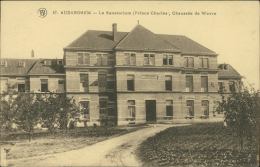 BELGIQUE AUDERGHEM / Le Sanatorium / - Oudergem - Auderghem