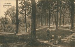 BELGIQUE AVERBODE / Sous Bois / - België