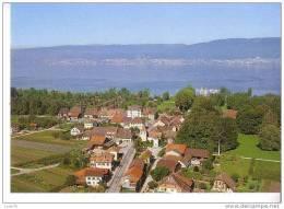CUDREFIN  - Village    -  Au Bord Du Lac De NEUFCHATEL  - N°  92.08 - VD Vaud