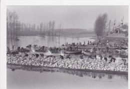 Hingene-Wintam Overstromingsramp 1953. - Reproductions