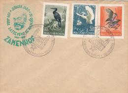 4313- ESPERANTO LANGUAGE CONGRESS, ZAMENHOF, SPECIAL COVER, 1959, HUNGARY - Esperanto